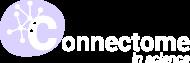 connectome-white